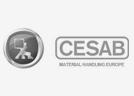 p_cesab
